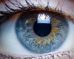transplante cornea